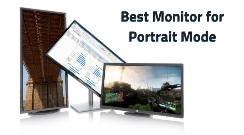 Best Monitor for Portrait Mode